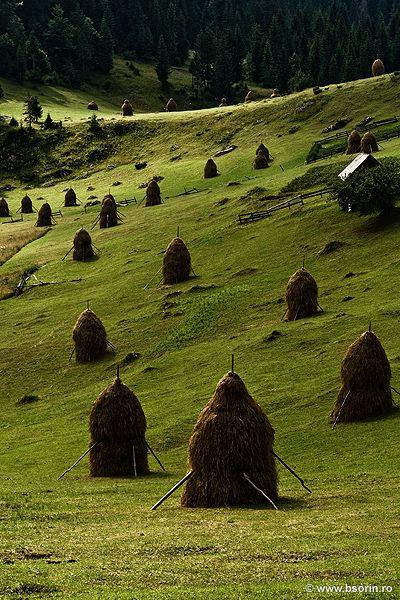 Haystacks, Romania
