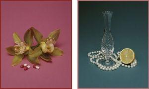 Still Life With Diet Pills / Still Life With Lemon (1999) - Yvonne Todd