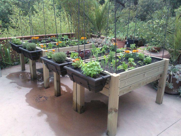 Cultivo de hortalizas ecológico en una mesa de madera tratada para exterior.