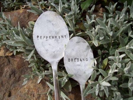 Fűszernövény jelölésére tippek