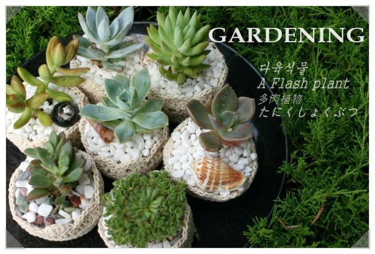 sunny&funny: GARDENING-crocht pot for mini plant(a flash plant)...