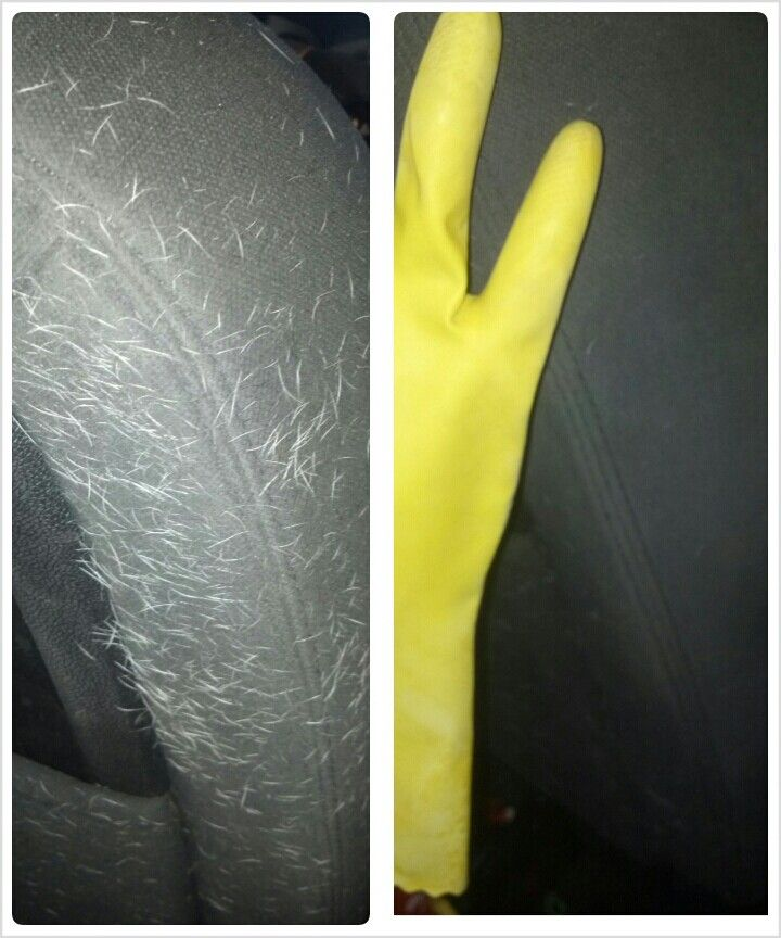 To get dog hair out of car seats, use rubber kitchen gloves and scrub.  The friction pulls it out