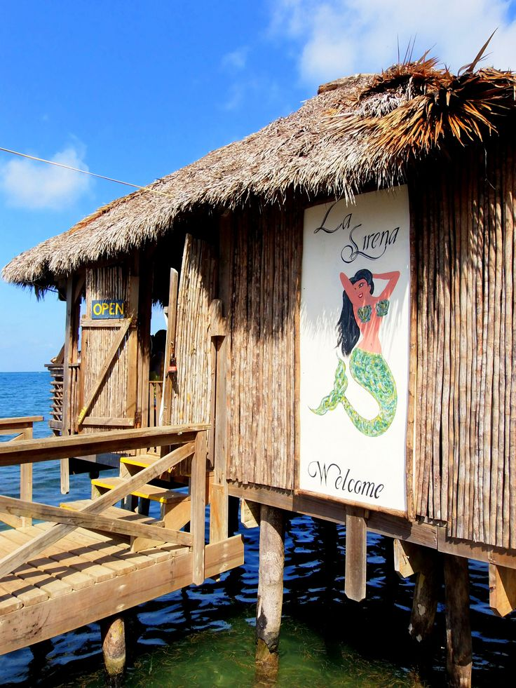 Looking for the best restaurants in Roatan? Here are a few can't miss that are popular with local expats and islanders.