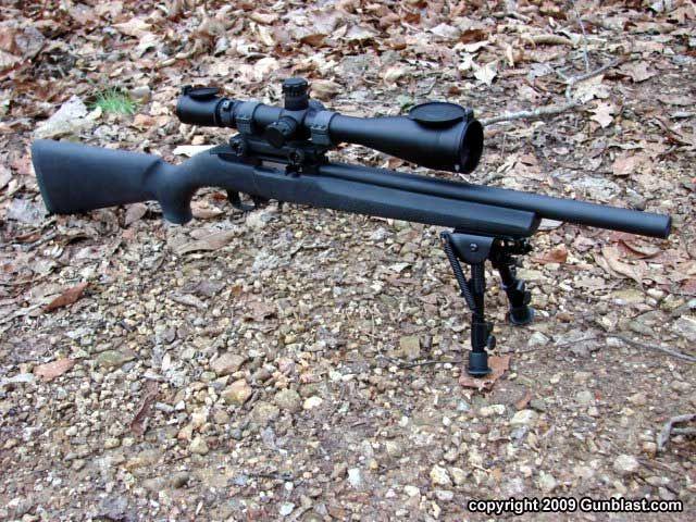 Ruger 10 22 tactical target.