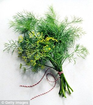 Loveage (a herb in the parsley family)