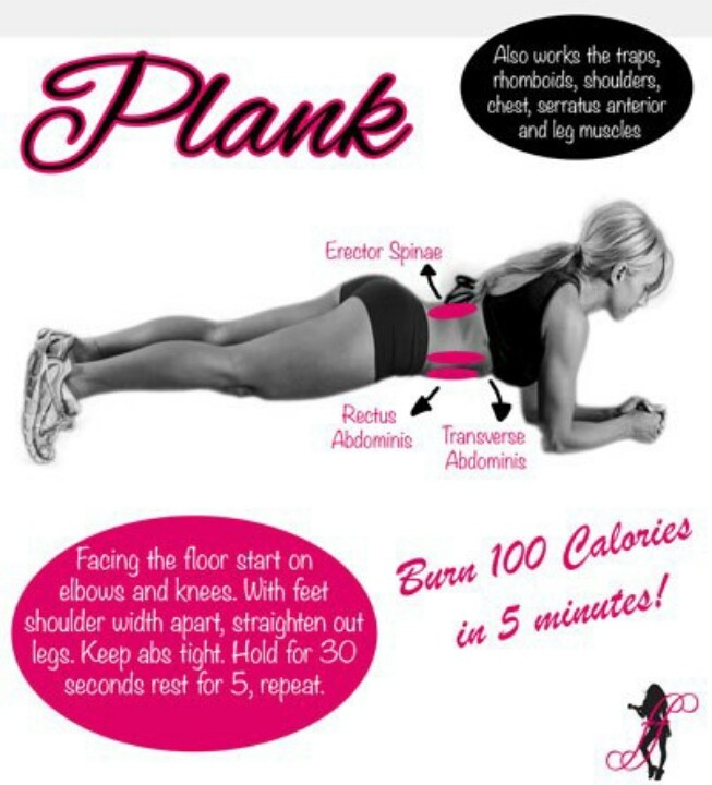 Plank- with specific and relevant info: muscle names, technique, etc... Short and sweet.