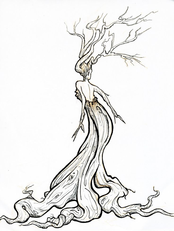 Line Drawing Tree Tattoo : Pix for gt twisted tree clipart line drawings pinterest