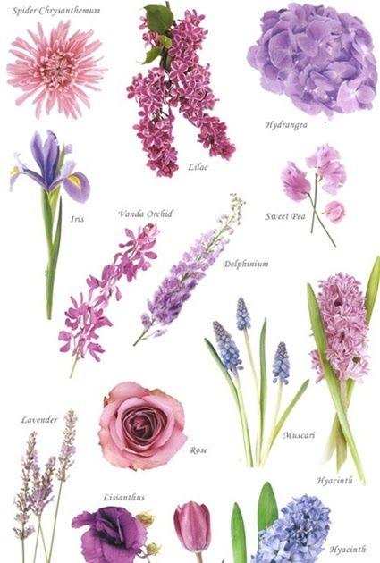 En blomsterbloggar full med inspiration och kreativitet! Inspiration för både professionella florister, hobbyflorister och blomsterälskare.