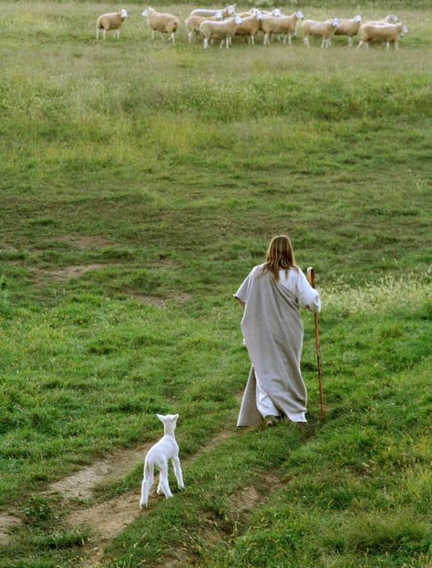 """He leads me. """"My sheep hear My voice, and I know them, and they follow me, and I give them eternal life, and they shall never perish.  And no one can snatch them out of My hand.""""  John 10:27-28"""