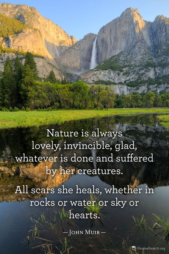 john muir quotes | John Muir Quote God created it FOR US and so often we ignore its beauty and wonder.: