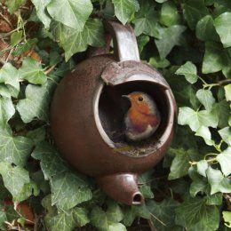 Tea pot - fuglekasse