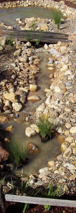 Dry Creek Bed with a pond