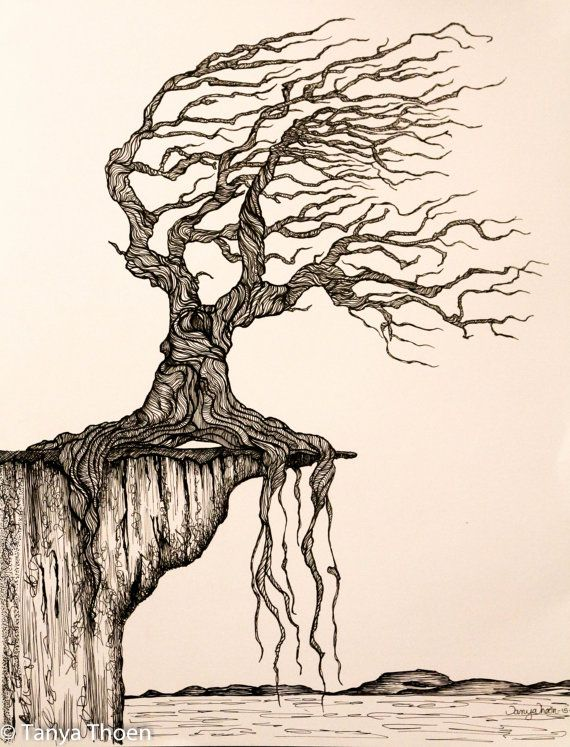 25 best ideas about tree drawings on pinterest trees for Best tree drawing