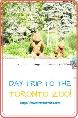 Tara Berries: DAY TRIP TO THE TORONTO ZOO   TARA BERRIES