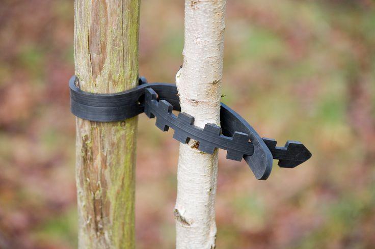 Flexibele band om een jonge boom aan een stevige paal te binden. Universeel, geschikt voor alle boomtypen. Eenvoudig te bevestigen zonder spijkers of krammen. Vangt alle windstoten op en beschadigt de boom niet. Hergebruikt rubber.  Lengte 60cm, breedte 2,8cm, dikte 6mm