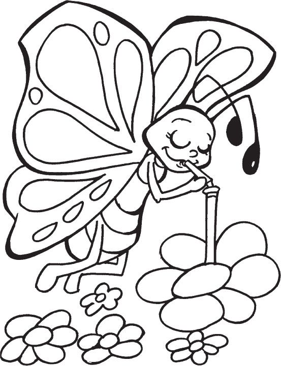Coloring Pages Butterflies Kidsfreecoloring