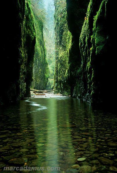 Marc Adamus – Fotografias da Natureza | Aido Bonsai