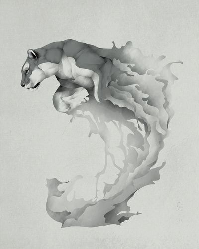 Puma pounce
