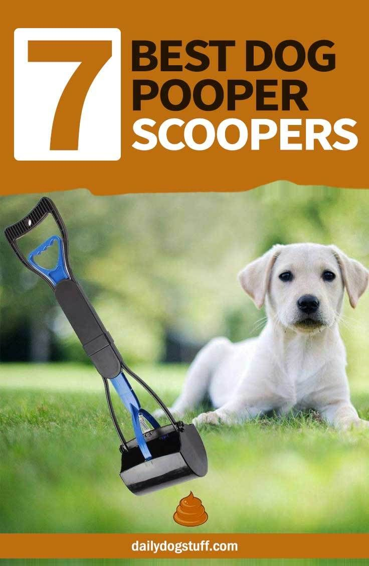 Top 7 Best Dog Pooper Scoopers For 2020 Dog Pooper Scooper