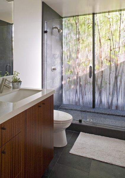 there is the option of using special surfaces to maintain privacy and give the appearance of nature. This bathroom has resin glazing with a ...