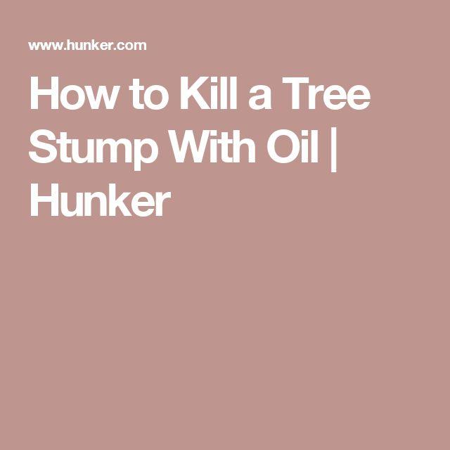 43 best greenish thumb images on pinterest gardening for Killing tree stumps with motor oil