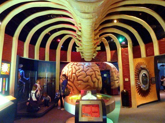 米国テキサス州ヒューストン「ヘルス博物館」にて。The Health Museum in Houston, Texas, USA.