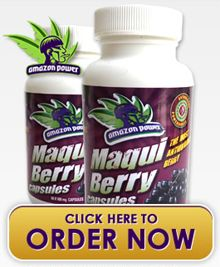 Acai Berry Tablets Has Been Treasured By The Individuals For