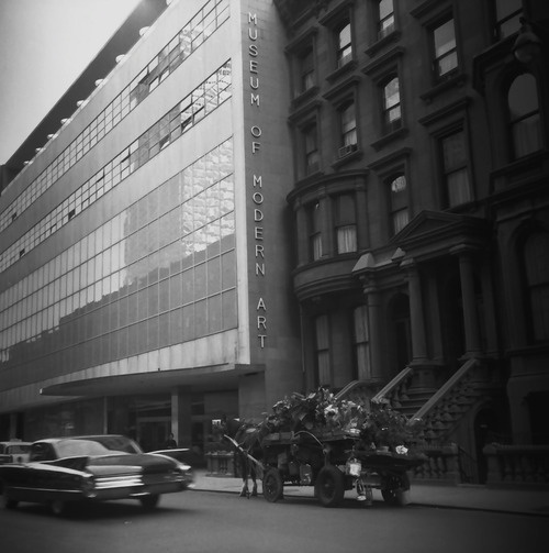 MoMA 1961  Photo: Lucien Clergue