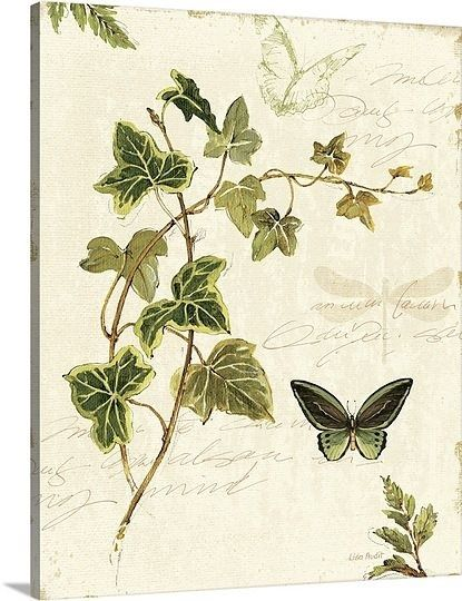 ivy painted walls | paint the walls / Ivy