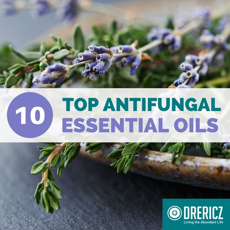 Don't let infections like candida rob you of the abundant life. Start using these 10 antifungal essential oils today to get on the road to recover!