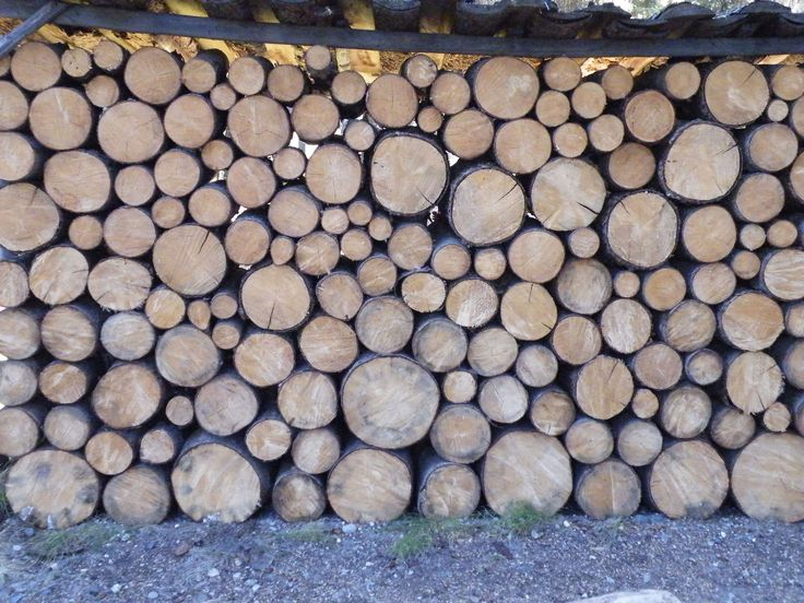 Neatest wood pile I have ever seen, Chena Village, Alaska. Sept 2009