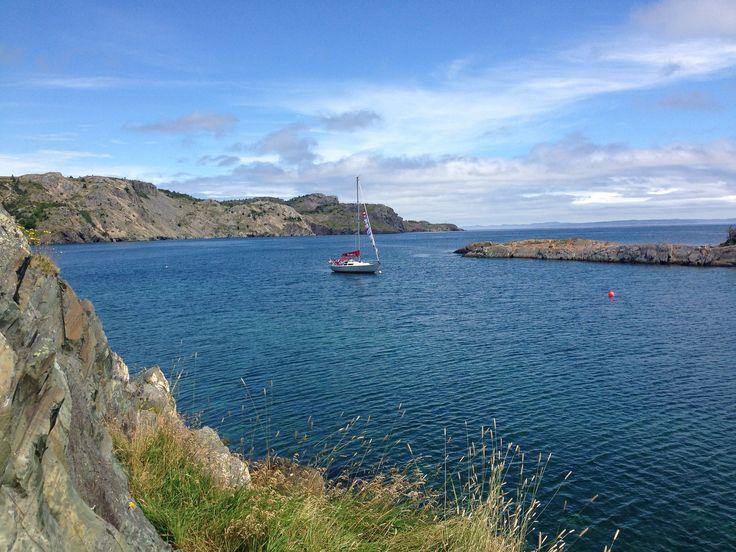View in Newfoundland  #ExploreNL, #ExploreCanada, #VisitNewfoundland, #wwwYYT  https://flic.kr/p/xFsE1J | wg_P2015-08-05 12.32.53 |