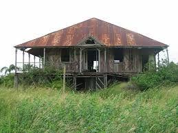 Image result for old queenslander shack bar house