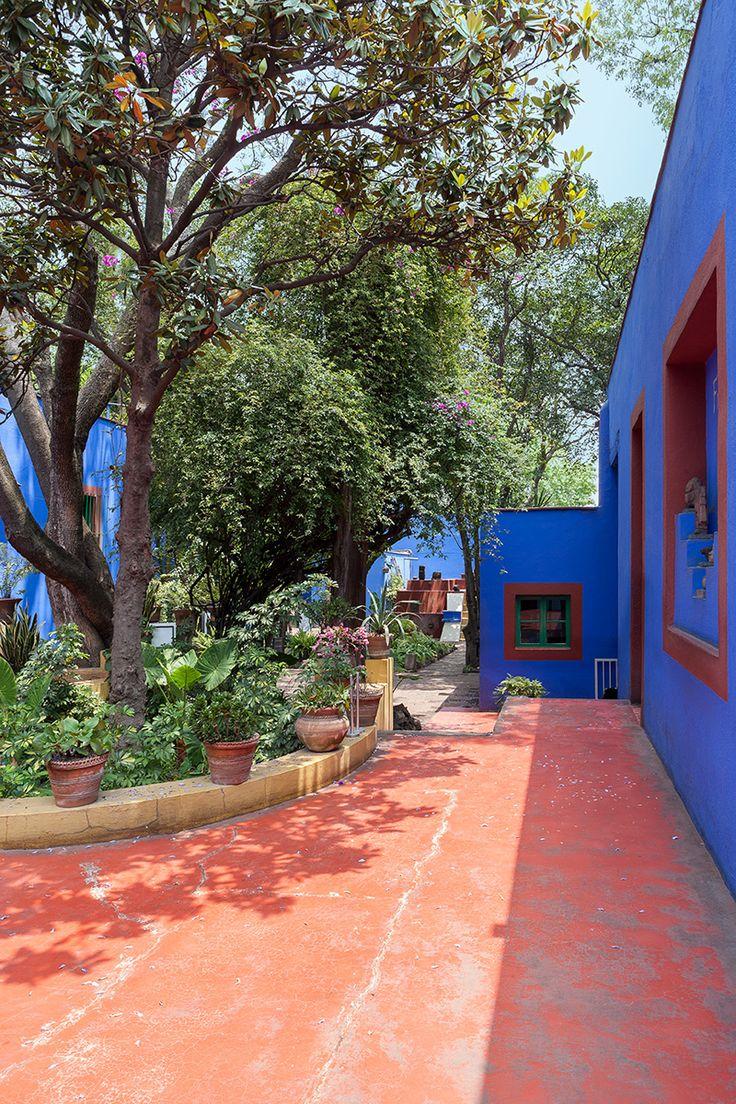Verde que te quiero verde - AD España, © Belén Imaz En el patio, Frida coleccionaba una gran variedad de plantas autóctonas: magueyes, nopales, viejitos, biznagas, yucas... todas identificables en sus pinturas.