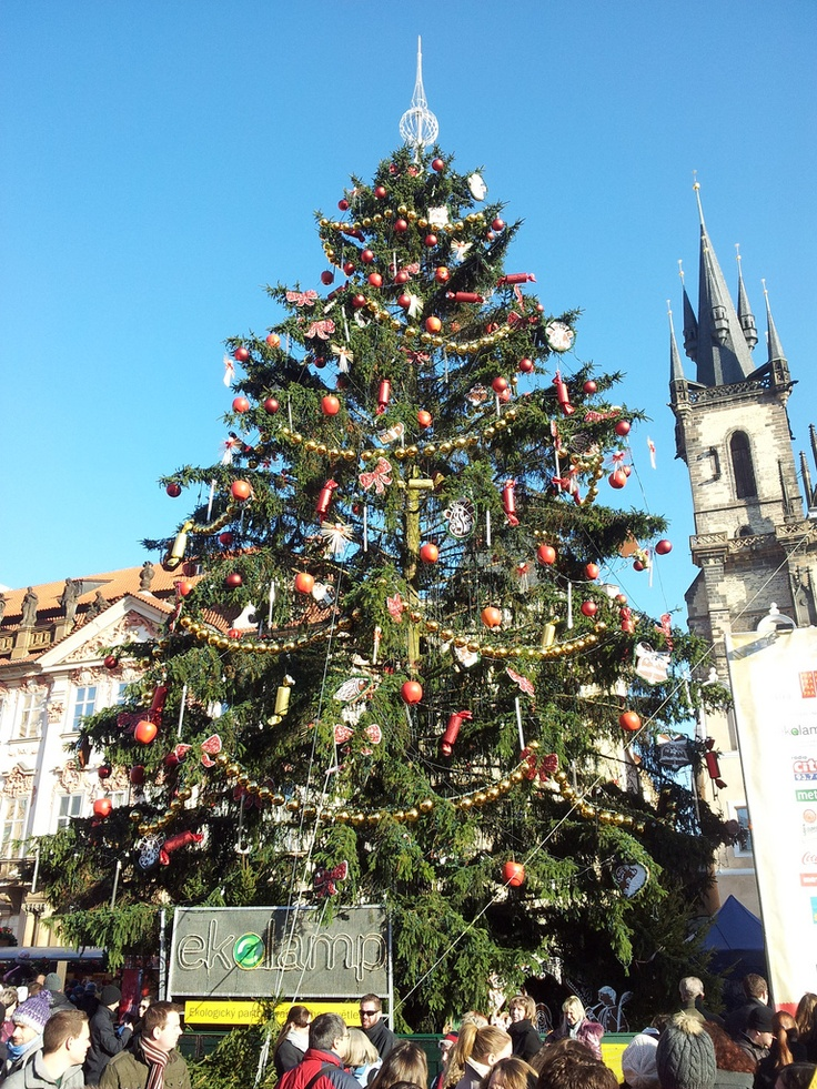 Christmas tree on Old Town Square