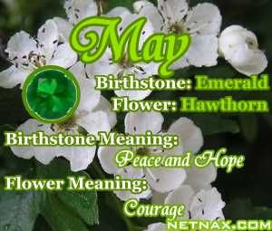111 best may my birth month images on pinterest