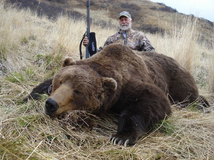 dating bear kodiak hunter Find great deals on ebay for case kodiak hunter and case bowie knife shop with confidence skip to main content ebay bear kodiak hunter case mid folding hunter.