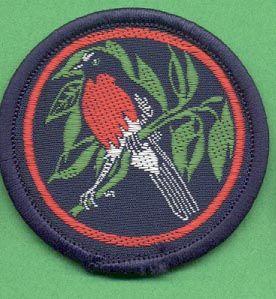 Official Australian Girl Guide badge - Robin