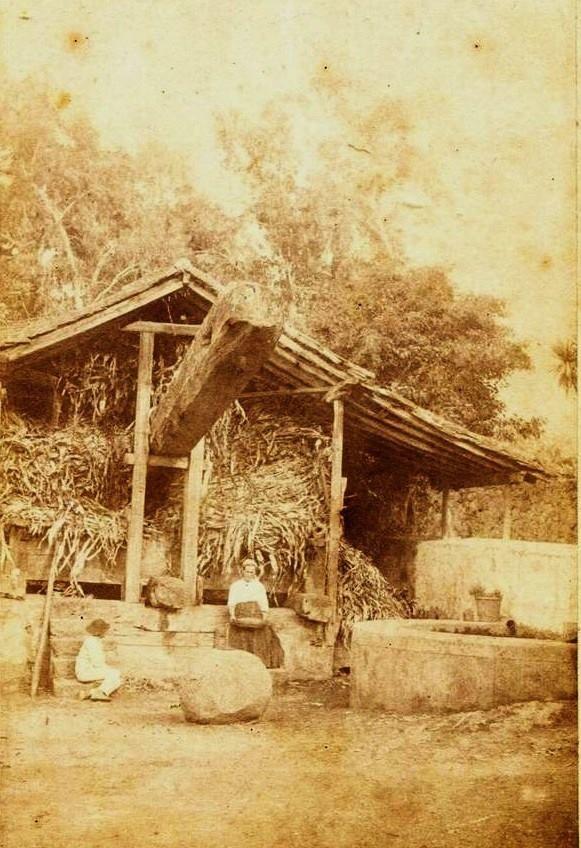Lagar 1850. La Orotava, Tenerife. Canary Island