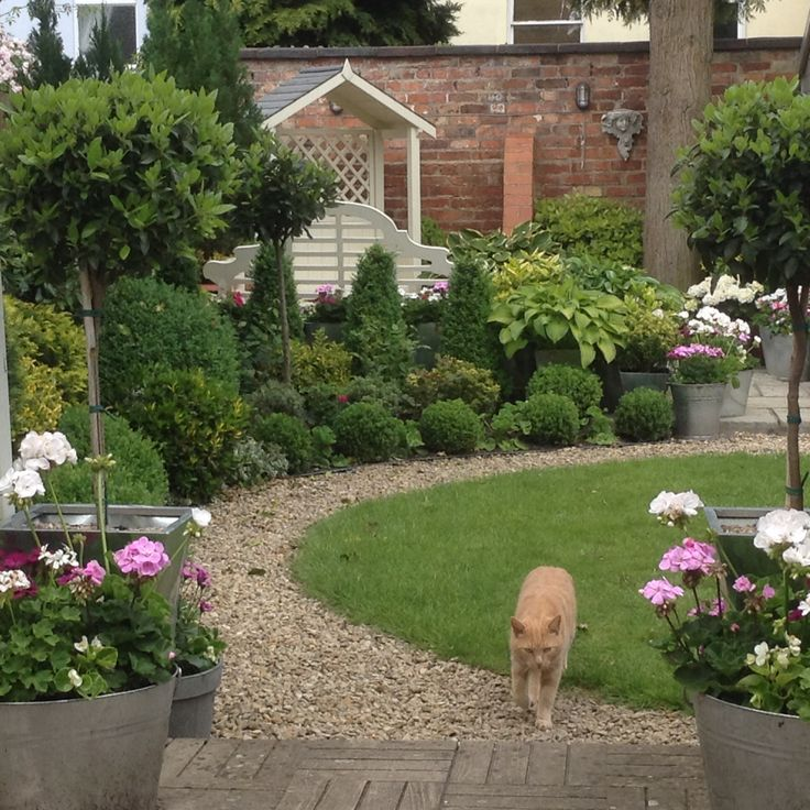 View of the Garden from the steps, plus Skipper!
