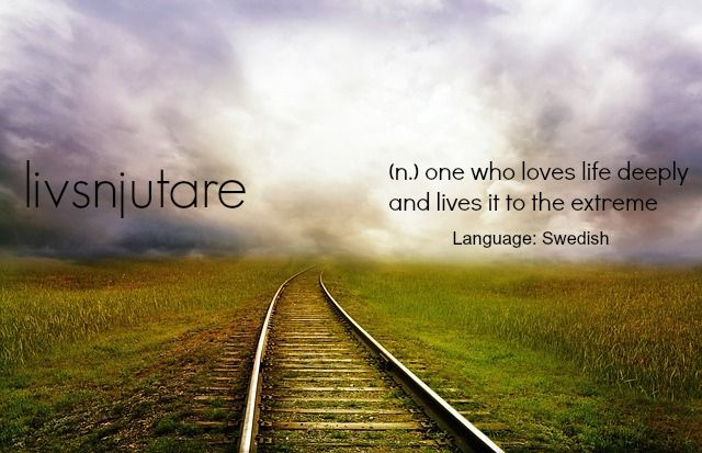 "livsnjutare - ""one who loves life deeply"". #swedish #travelword #travel…"