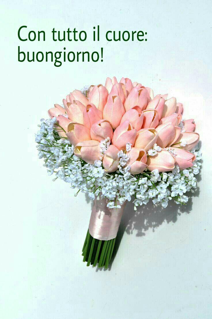 Pin Af Donna Flor On Godmorgen Pinterest Hand Bouquet-7270