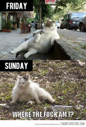 How my weekends usually go…