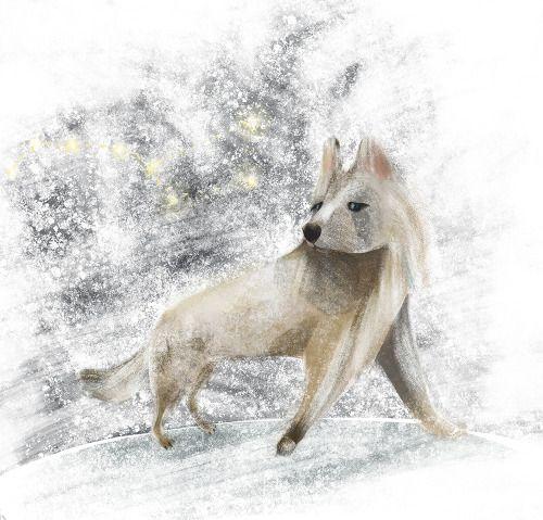 h - husky