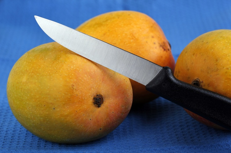 Among Indian mangoes, the Alphonso, named after Afonso de Albuquerque, is considered the best in terms of sweetness, richness and flavor. Its considerable shelf life of a week after it is ripe makes it exportable. It is also one of the most expensive kinds of mango and is grown mainly in western India. It is in season April through May and the fruit weigh between 150g and 300g each. Sale of Indian mangoes was permitted in the US from 2007. Individuals are not allowed to bring them into the…