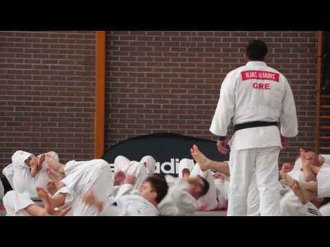 sweat a capuche adidas judo