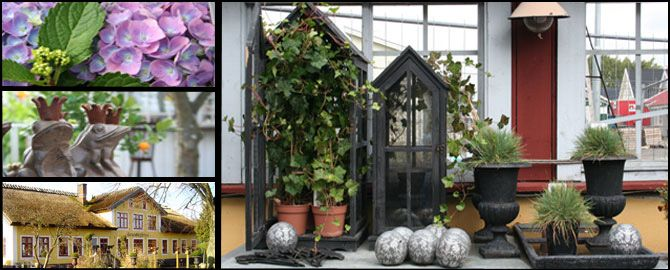 Jenny Strandhs blomsterdesign i Oxie.