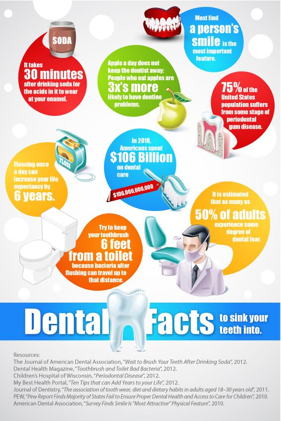 Dental facts to sink your teeth into. It takes 30 minutes after drinking soda for the acids in it to wear at your enamel. Apple a day does not keep the dentist away: People who eat apples are 3x's more likely to have dentine problems.  Most find a person's smile is the most important feature.  75% of the United States population suffers from some stage of periodontal gum disease.  Flossing once a day can increase your life expectancy by 6 years.