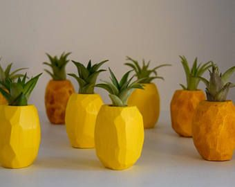 Little Pineapple Air Plant Holder with Magnet
