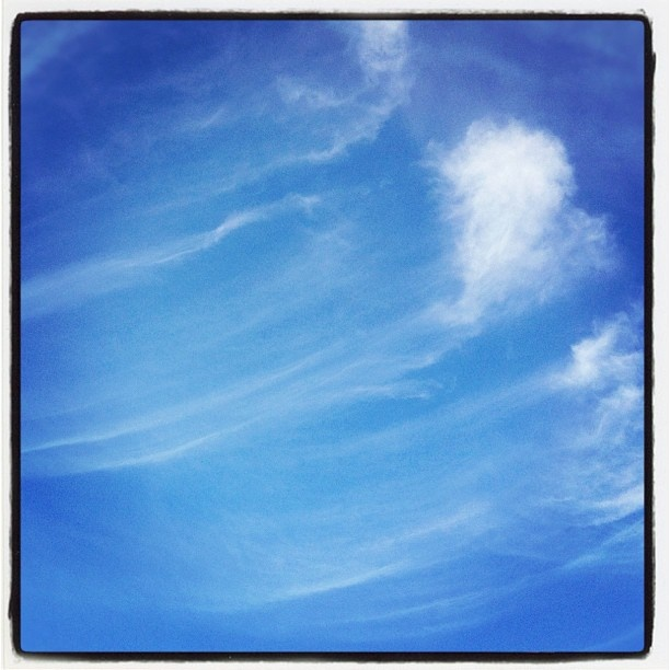 """@mauroparolo's photo: """"#ig #iphone #white #paint in #bluesky"""""""